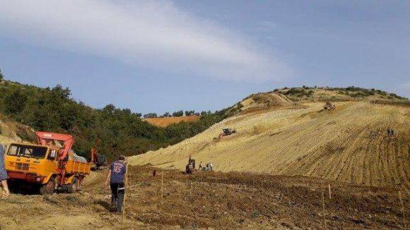 Inicio de la plantación en Calabria