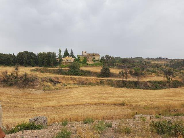 Las parcelas de plantación se ubican en terrenos privados.