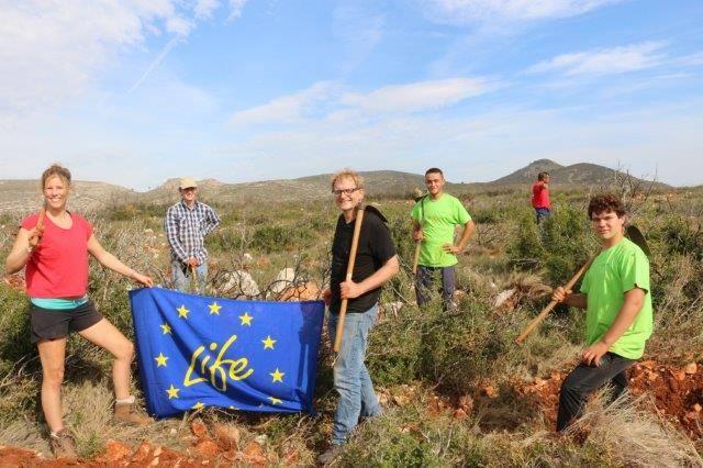 En Tous (Valencia) plantamos una variedad de especies autóctonas.