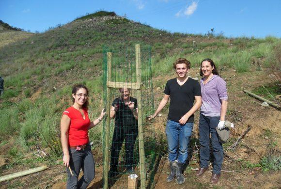 Los vecinos de Alella plantaron los Alcornoque utilizando los Cocoons.