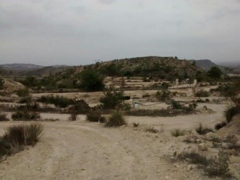 Las zonas de plantación en la Comunidad Valenciana cuentan con un terreno difícil.