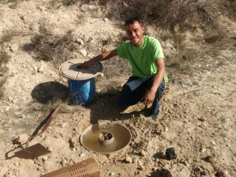 Plantación con Cocoons en Tous, Valencia
