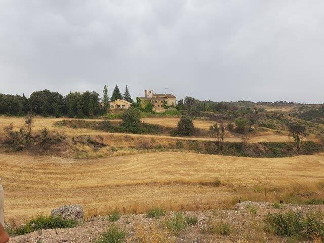 CREAF y Volterra diseñan las plantaciones en Cataluña