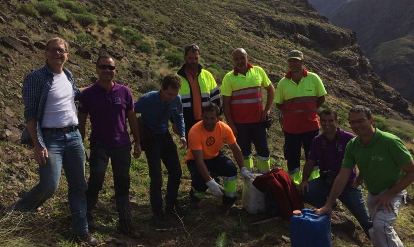 First planting in Gran Canaria