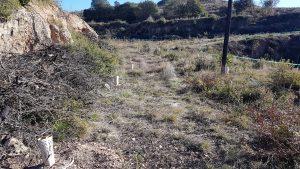 Plantación con Cocoons en El Bruc, Cataluña.