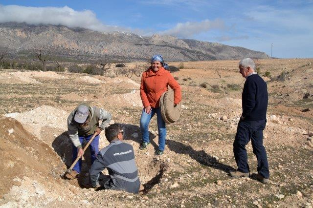 The owners of the terrain collaborated actively with the plantation of Almonds and Tamarix shrubs.