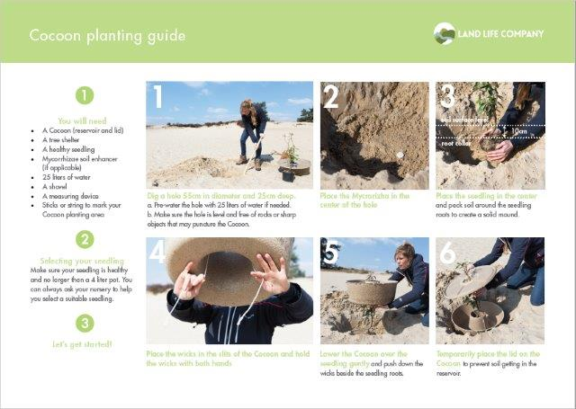 Cocoon planting guide now available for download
