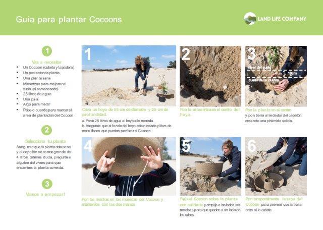 Guía para plantar con el Cocoon disponible en la página web del proyecto The Green Link