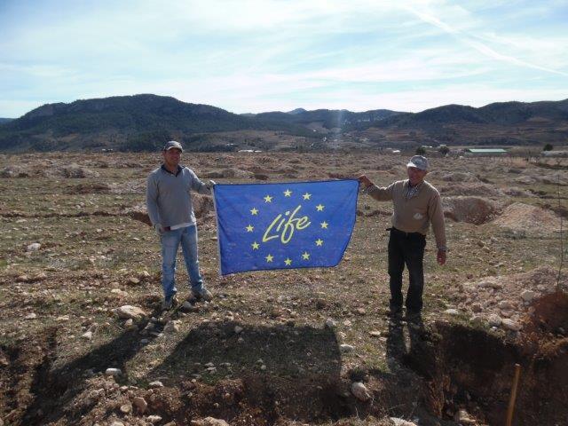 Se continúa la plantación de almendro en Almería