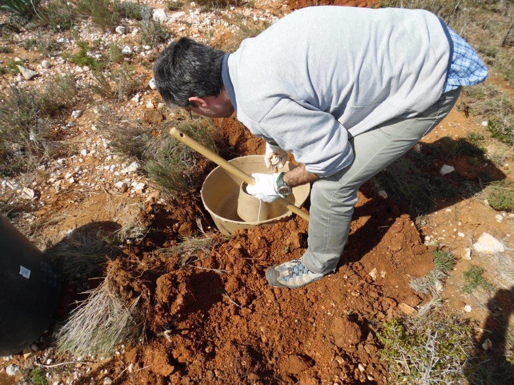 Los equipos de Volterra y CIDE-CSIC demostraron la forma correcta de plantar con la tecnología Cocoon.