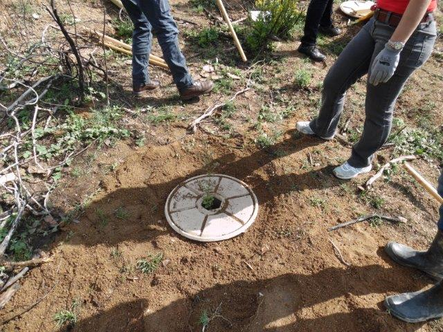 Voluntary group of El Bruc (Catalonia) organizes communal reforestation