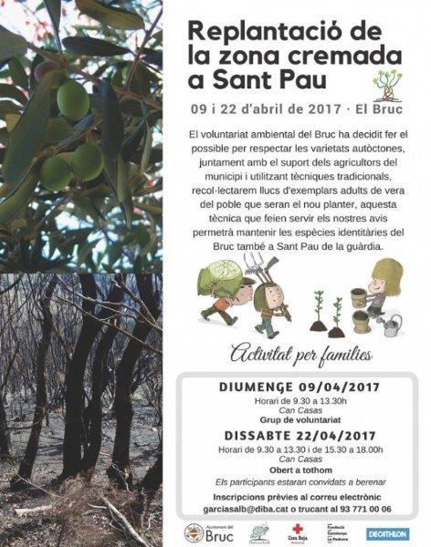 El Grup de Voluntariat de El Bruc organiza dos jornadas de reforestación comunal.