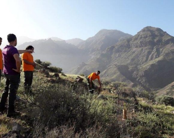 Trabajos de campo en Gran Canaria