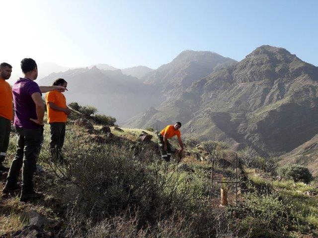 Fieldwork in Gran Canaria