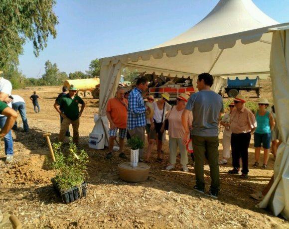Volterra participa en una sesión de plantación de árboles de Maggi (Nestlé), Conesa y Fundación Global Nature en Badajoz