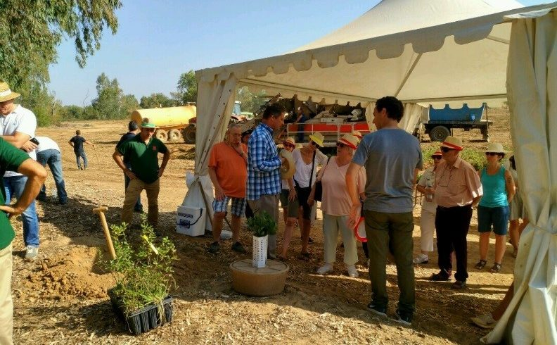 Volterra participates to a tree planting session by Maggi (Nestlé), Conesa and Fundación Global Nature in Badajoz