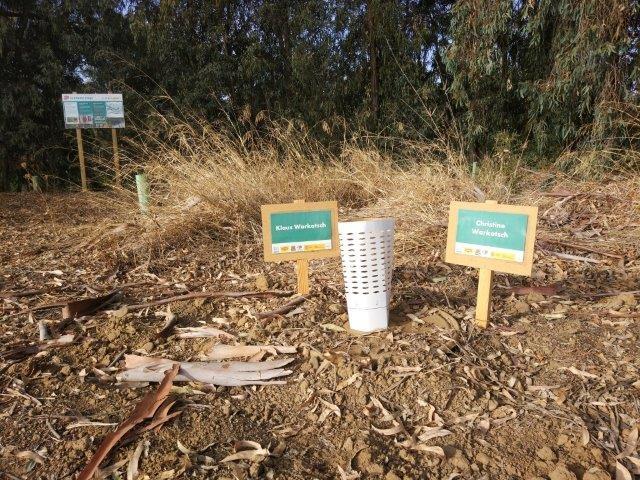 Volterra visitó la Fundación Global Nature un mes después de la siembra