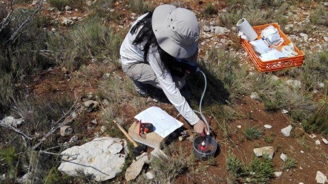 Evaluación del contenido de Carbono en Tous, Valencia