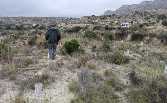 Monitoreo en el área de Jijona, Alicante
