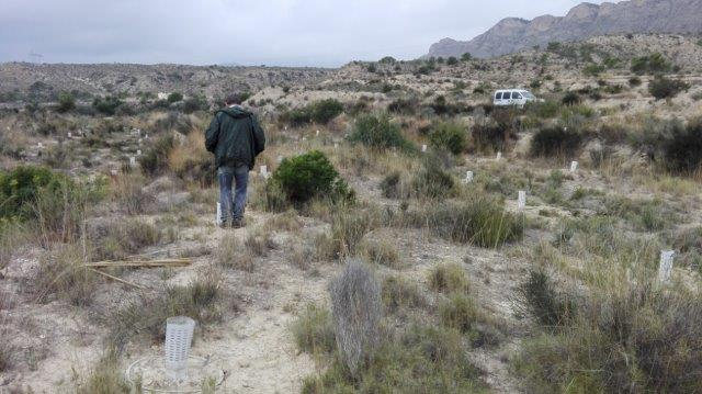 Monitoring in the Jijona area, Alicante