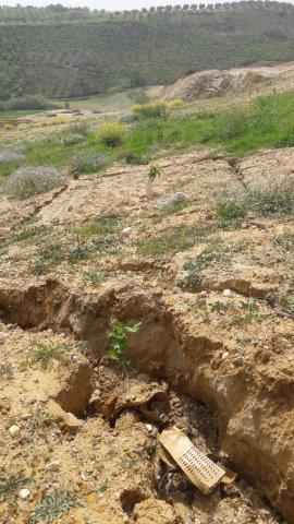 Visit to the experimental field in Calabria: soil erosion due to excessive rainfall