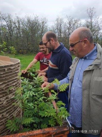 Visita de Allasia Plant Magna Grecia al area de replicación del Life Green Link en Palencia