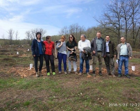 Los jefes de las Servicios de Espacios Naturales de la Junta de Castilla y León en Valladolid y Palencia visitan la plantación en Matamorisca (Palencia)