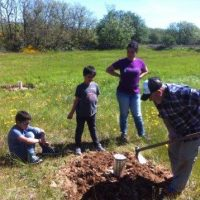 Plantation with Cocoon by neighboring volunteers of Matamorisca (Palencia)