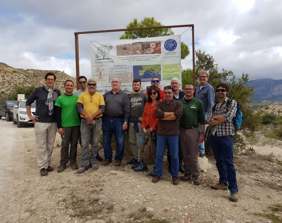 Visita de campo a Jijona como parte de la 6ta reunión oficial