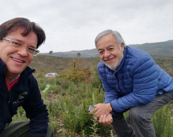 Interés de Chile en LIFE The Green Link