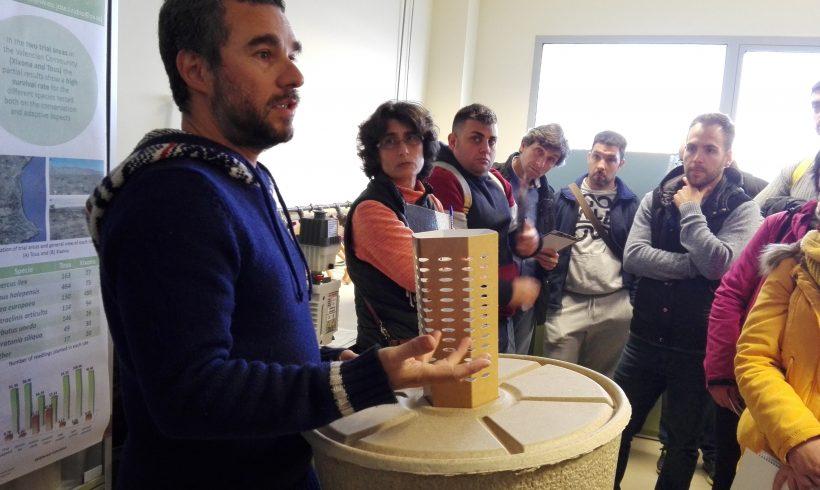 Actividades de replicación en España