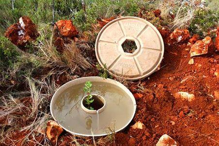 Con ayuda del Cocoon contrarrestan la desertificación en el Mediterráneo