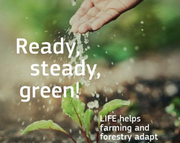 "LIFE the Green Link en la revista ""Ready, Steady, Green!"""
