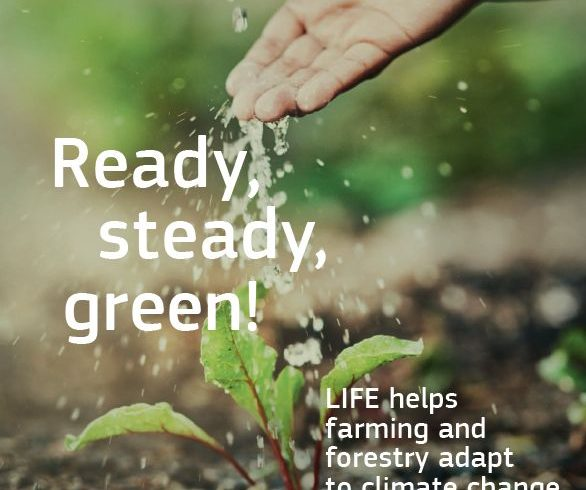 "LIFE the Green Link en la revista ""Ready, Steady, Green!"""