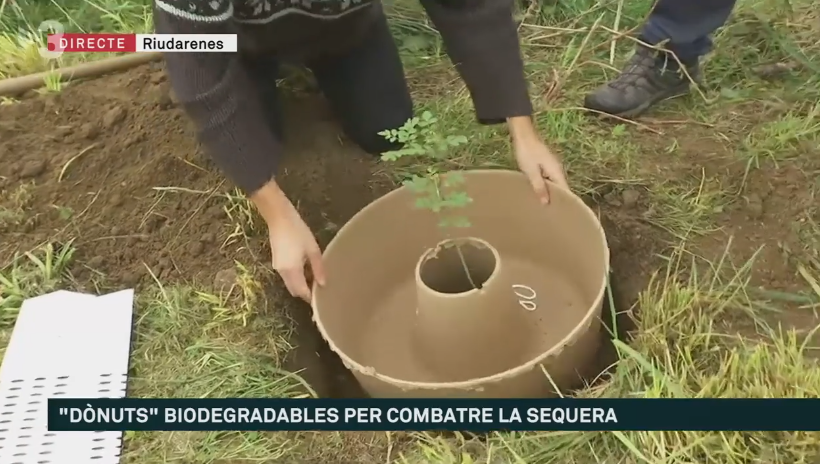 LIFE Green Link in a video of TV3alacarta in «Els matins»