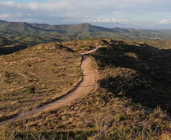 Volterra Ecosystems monitorea ensayos de reforestación con Cocoons