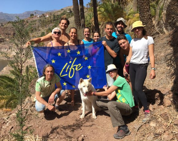 Replication in Gran Canaria with culture and ecology association IMIDAUEN