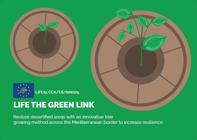 Layman's report The Green Link – English version's launch