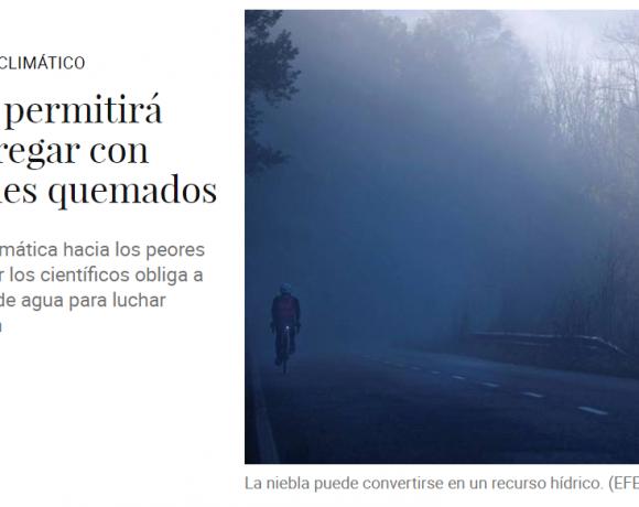 AFTER LIFE- Un proyecto permitirá regenerar y regar con niebla bosques quemados